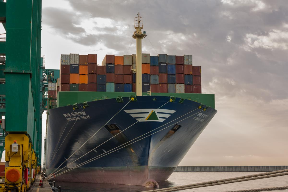 PortNews Gigantismo Navale
