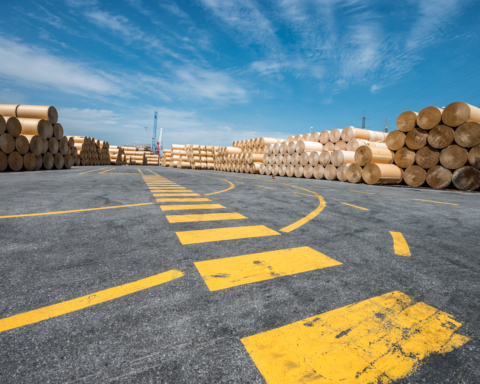 Porto di Livorno - Stoccaggio rotoli Kraft